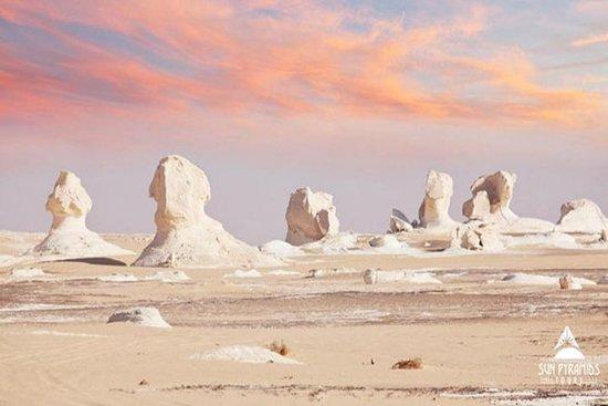 Tour de un día al Desierto Blanco y...