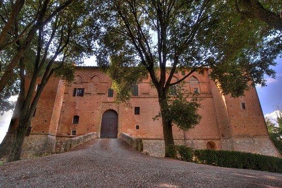 Excursão ao Castelo e Vinhas de...