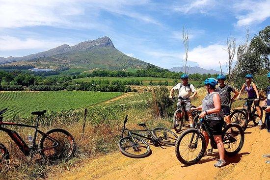 E-Bike Stellenbosch to Franschhoek