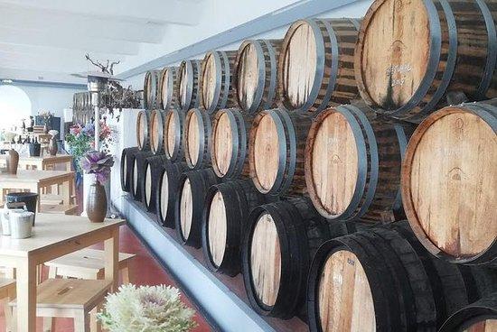 Wine Tasting and food Experiences...
