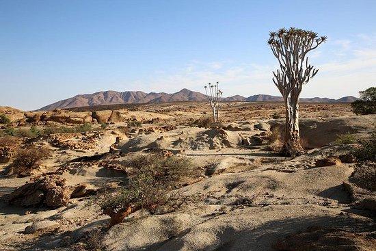 素晴らしい章 - Ganab砂漠ループ