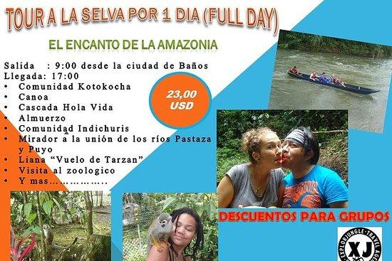 Excursión por un día a la Amazonía...