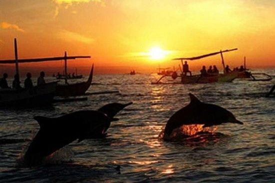 Bali Lovina Dolphin et Wanagiri...