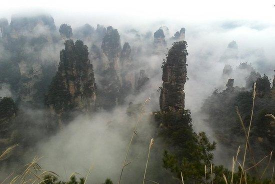 Privat 3-dagers Zhangjiajie-tur, ZZJ...