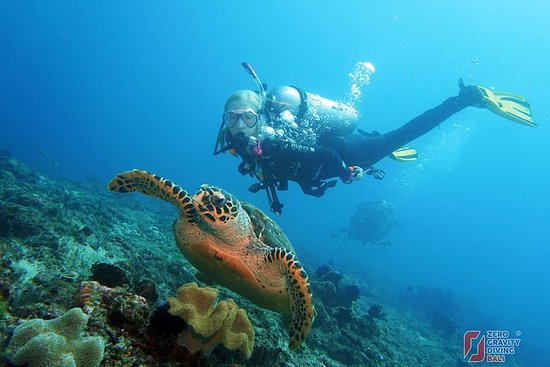 Try Dive at Tulamben USAT Liberty...