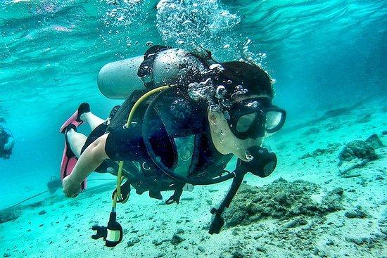Koh Tao Diving Tour, 2 immersioni