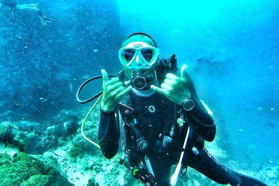 Samui Diving Tour - Sail Rock, 2
