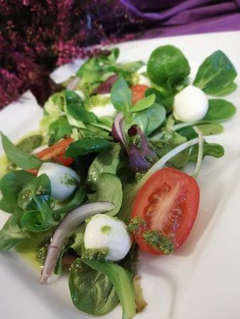 Lettuce salad with mozzarella