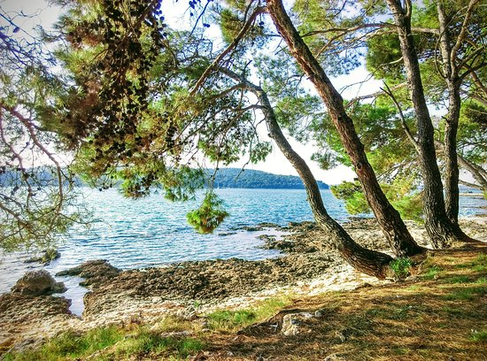 Liznjan, Croatia: Blissful summer