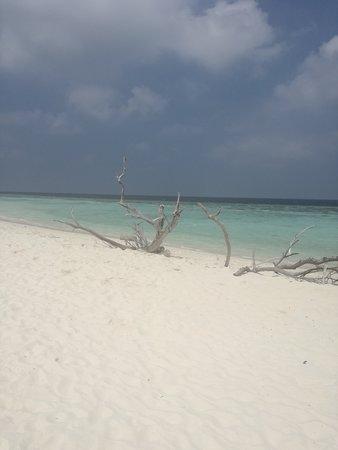 Omadhoo Island: Omadhoo beach