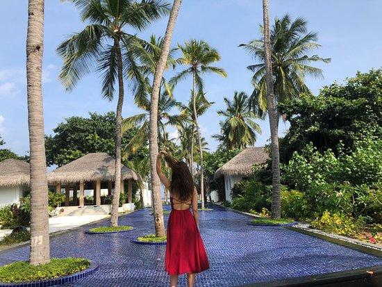 Bilde fra Shaviyani Atoll
