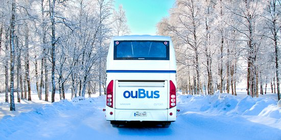 Oubus