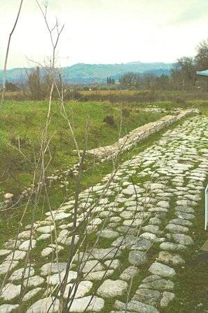 Parco Archeologico di Forum Sempronii