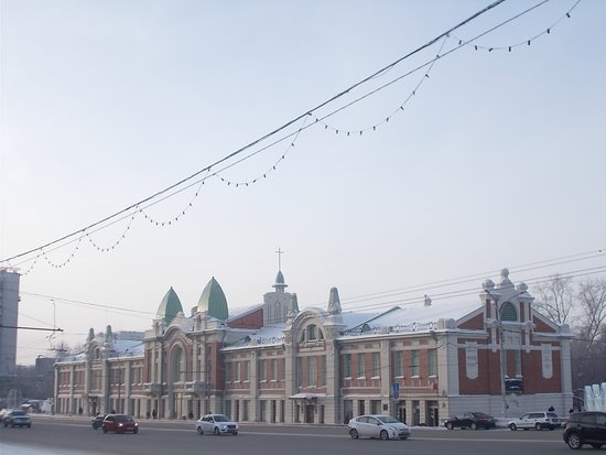 ‪Novosibirsk State Museum of Local History and Nature‬