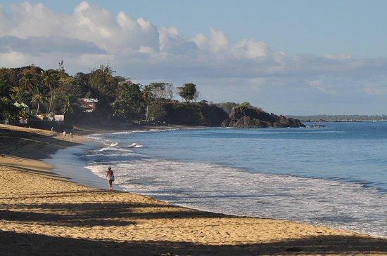 https://media-cdn.tripadvisor.com/media/photo-s/16/62/9b/80/morning-on-turtle-beach.jpg