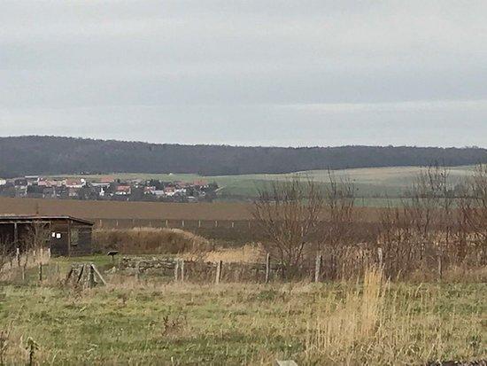Blick auf das weitläufige Gelände der Kaiserpfalz