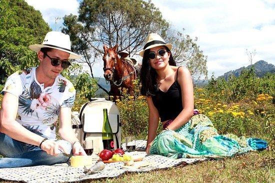 Qué tal disfrutar de un picnic por Tepoztlán en este mes del amor y la amistad te esperamos.