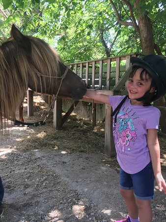 Our Lil buckaroos love our Pony Rides!