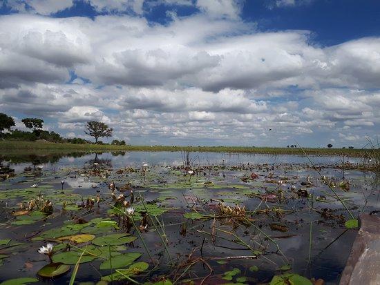 Okavango Delta: Mokoro trip in the Delta