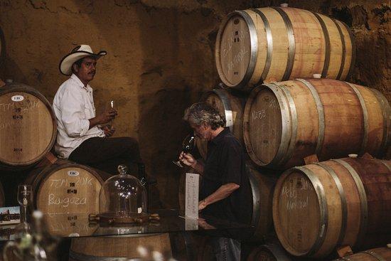 Phil, our winemaker, with Juan, tasting wines in Vena Cava.