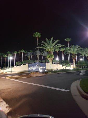 Amazing Resort That's Close to Disney
