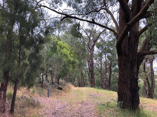 Pioneer Reserve
