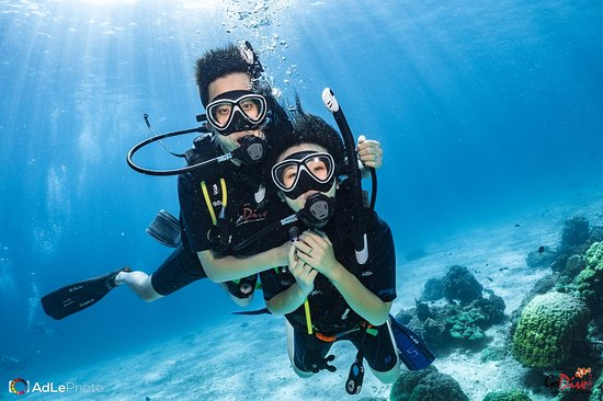 "Koh Ha, Koh Lanta Krabi THAILAND.  Go Dive Lanta Experience a fabulous underwater world today! ========================== Welcome to Join. Call 081-892-321 🇹🇭️ 想要学潜水吗?我们 Go Dive Lanta 有中文课程. 🇨🇳️ Wanna learn diving ? Go Dive Lanta have Chinese Course available for you. ><((("">Scuba Diving with Go Dive Lanta, Ko Lanta, Krabi, THAILAND.<"")))>< ><(((""> <3"