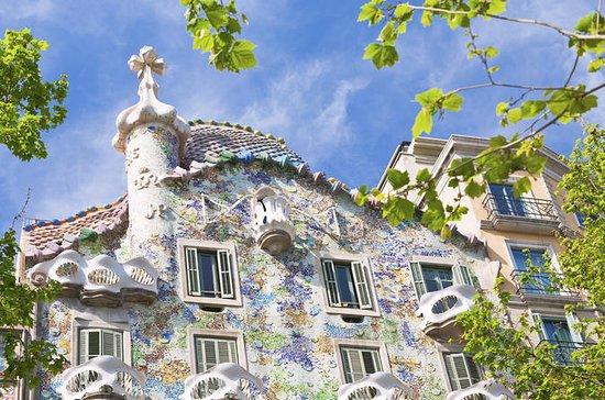 Biglietto d'ingresso per Casa Batlló