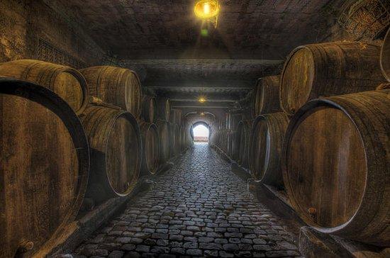 Tenerife Bodegas Monje酒庄之旅,葡萄酒和奶酪品尝