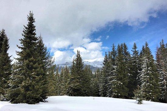 Rila mountain hiking - Day Tour
