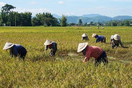 Nha Trang Secret landskap og vannfall