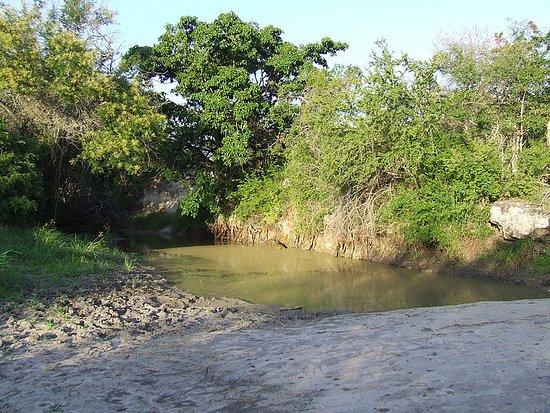 Mkomazi Game Reserve, Tanzanija: Mkomazi river