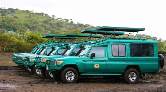 Wildlife Expedition & Safaris: Our Extended Safari  Vehicle well maintained and ready for both group and private safari