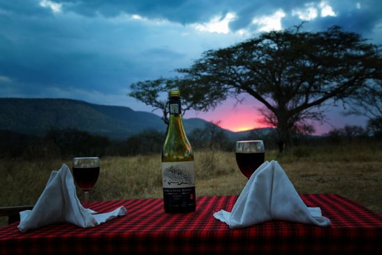 Wildlife Expedition & Safaris: Observe a sundowner event in Serengeti