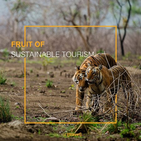 África: When you travel, make an impact. Make it a habit to travel sustainably. After all, we all share this Earth and everyone has a right to a good life.  #SustainableTourism #UNSDG #SDG13 #SDG15 #ImpactTravel #ownyourtrip