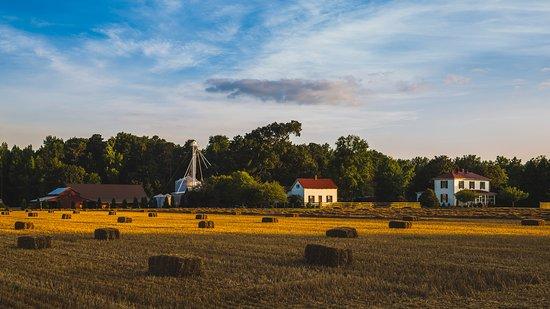 Prince George, VA: The Barns of Kanak