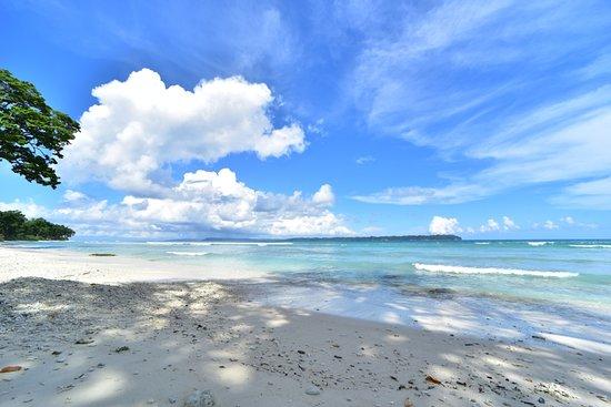 Pool - Picture of Sea Shell Samssara, Neil Island - Tripadvisor