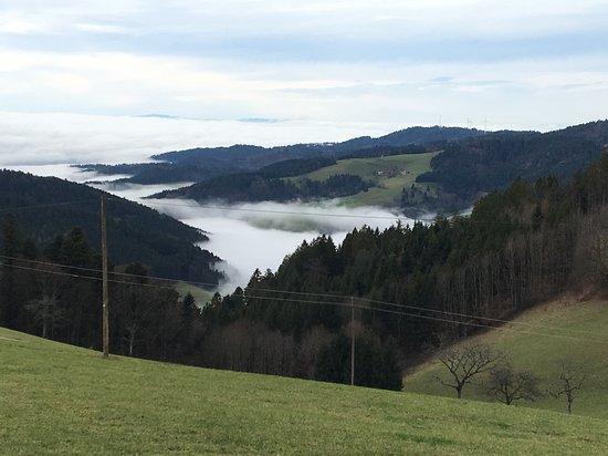 Black Forest, ألمانيا: Schwarzwald-Stimmung