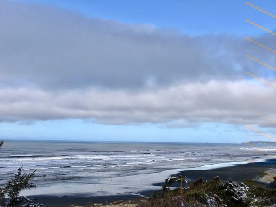 Pacific Beach, WA: Beautiful view just outside our cottage.