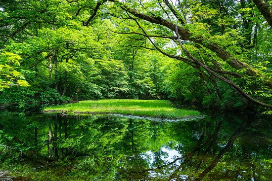Otowa Pond