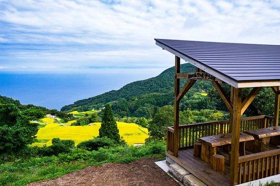 Sado, ญี่ปุ่น: 岩首昇竜棚田展望台「そらまめ」からの眺望