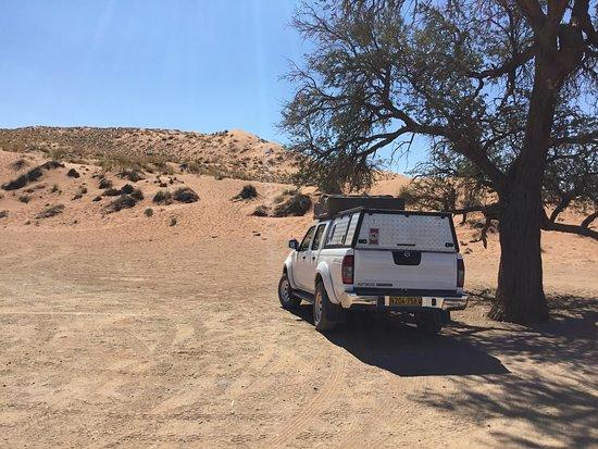 Парк Намиб-Науклуфт, Намибия: Nach dem Aufstieg Blick zurück auf die Elim-Düne.