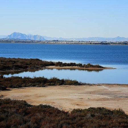 Parque Natural De Torrevieja Photo