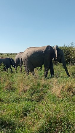 Kenya Tour Budget Safari (Rift Valley Province) - 2019 All You Need