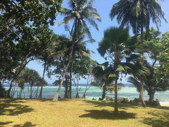 Tiwi Photo