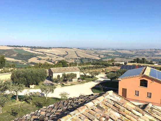 Azienda Agricola Lorese