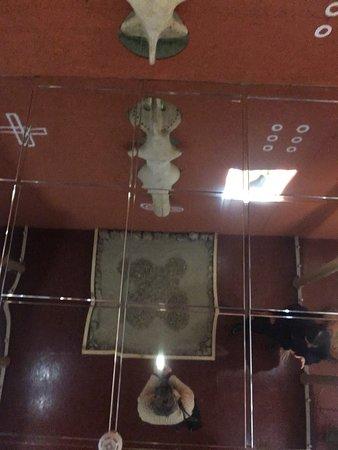 Триполье, Украина: Kyiv Regional Archeological Museum