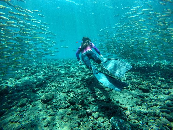 Costa Rica: Freediving in paradise