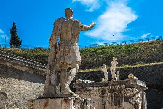 Private Tour: Ruins of Herculaneum...