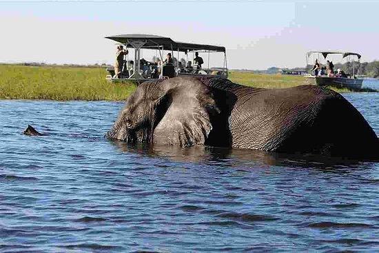 4-Day Victoria Falls and Chobe...